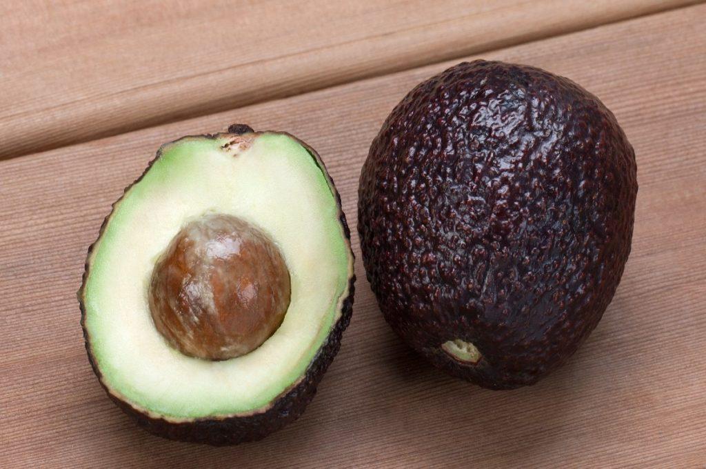 авокадо сорт хасс
