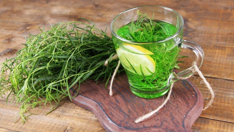 трава тархун применение чай